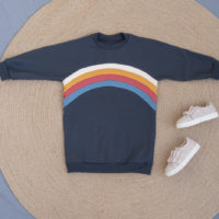 Rainbow teddy